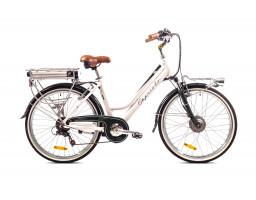 Classic e-bike 2019