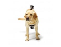 Nosač GoPro kamere za pse
